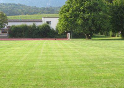 FeldbrunnenSchule